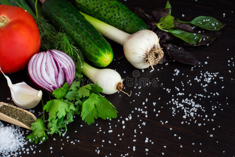Fresh vegetables for salad and canning. Onion, garlic, cucumber and spices. On dark background stock photography