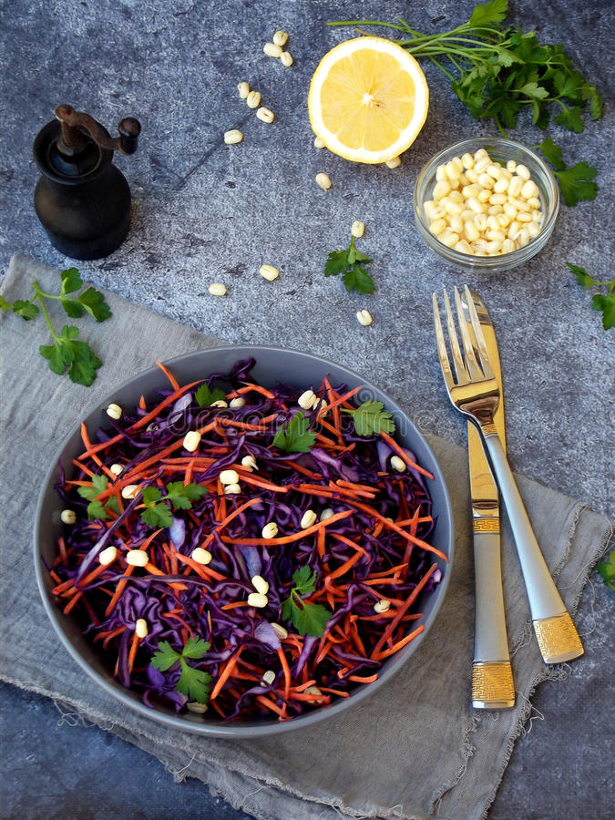 Fresh vegetables salad with purple cabbage, carrot, sprouted mung, parsley on grey clay plate on dark background. Cole Slaw Salad. Of red cabbage. Top view stock image