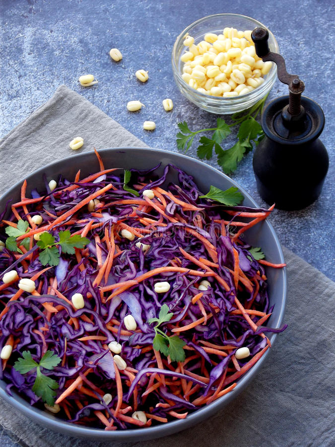 Fresh vegetables salad with purple cabbage, carrot, sprouted mung, parsley on grey clay plate on dark background. Cole Slaw Salad. Of red cabbage royalty free stock images
