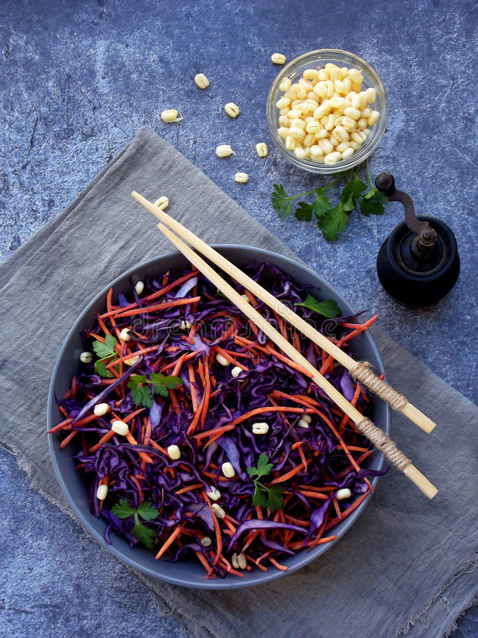 Fresh vegetables salad with purple cabbage, carrot, sprouted mung, parsley on grey clay plate on dark background. Cole Slaw Salad. Of red cabbage. Top view royalty free stock images