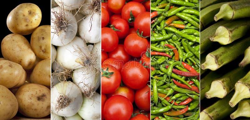 Fresh Vegetables - Cooking Ingredients stock image