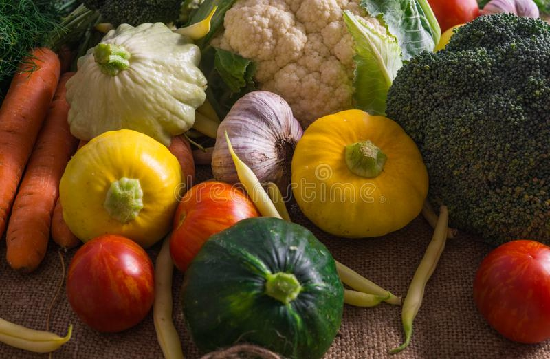 Fresh vegetables, small squash, as well as other vegetables, cauliflower, broccoli, garlic, tomatoes grown on an eco-farm.  royalty free stock photography