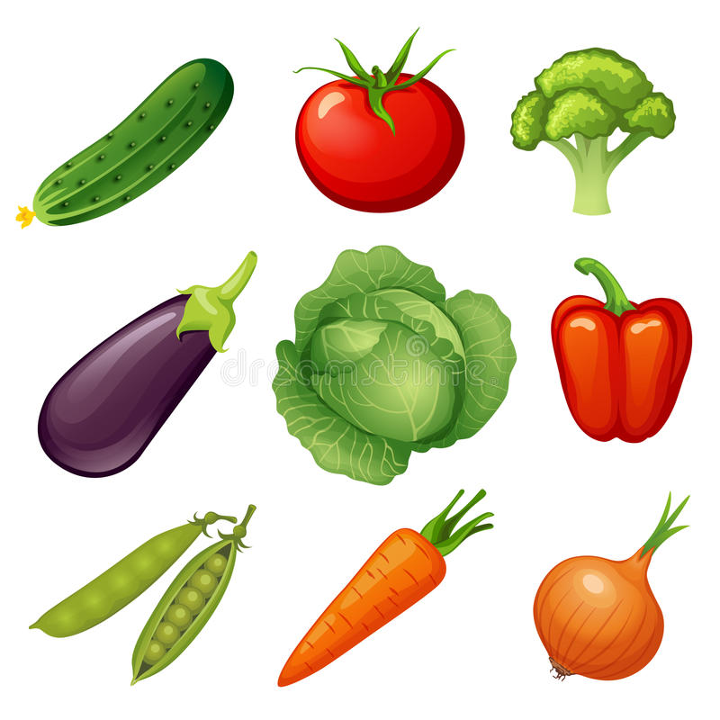 Fresh vegetables. Vegetable icon. Vegan food. Cucumber, tomato, broccoli, eggplant, cabbage, peppers, peas, carrots, onions royalty free illustration