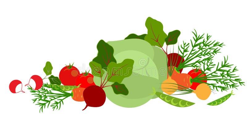 Fresh vegetables royalty free illustration