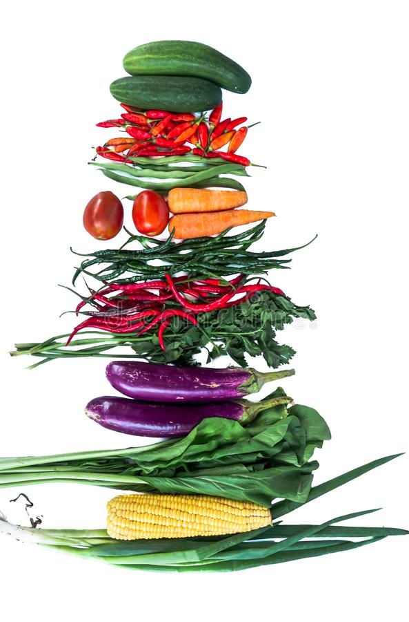 Fresh vegetables with white background. Chili, corn, eggplant, mustard greens, carrots, tomatoes, cucumbers stock image
