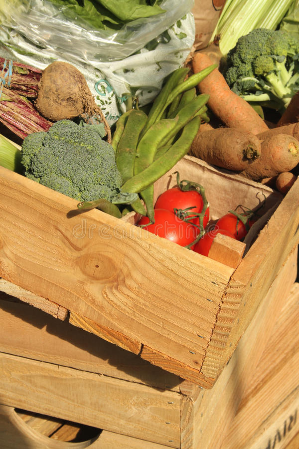 Fresh vegetables in a wooden box. A selection of fresh vegetables in a wooden delivery box royalty free stock photos