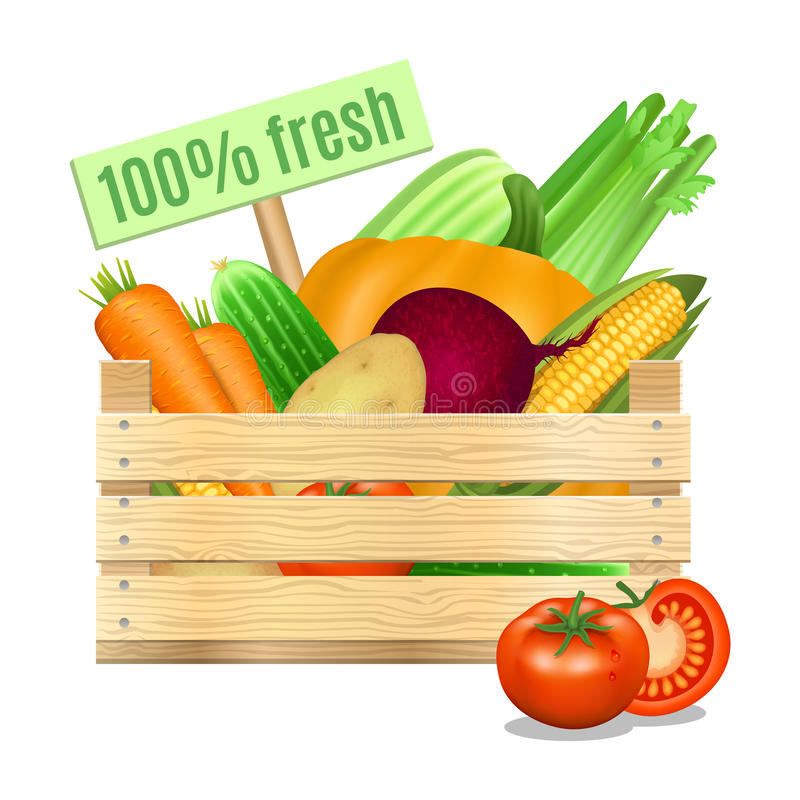 Fresh vegetables in a wooden box on a white background. Vector royalty free illustration