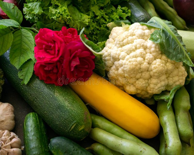 Fresh vegetables are zucchini, eggplant, cucumbers, onions, cauliflower, garlic and beans on the table royalty free stock photos
