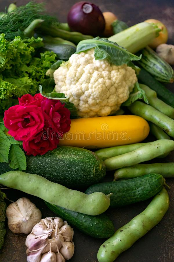Fresh vegetables are zucchini, eggplant, cucumbers, onions, cauliflower, garlic and beans on the table royalty free stock images