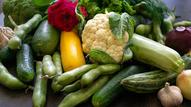 Fresh vegetables are zucchini, eggplant, cucumbers, onions, cauliflower, garlic and beans on the table royalty free stock photography
