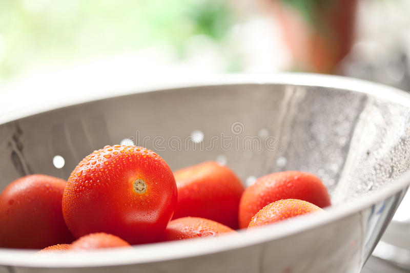 Fresh, Vibrant Roma Tomatoes in Colander with Wate stock image