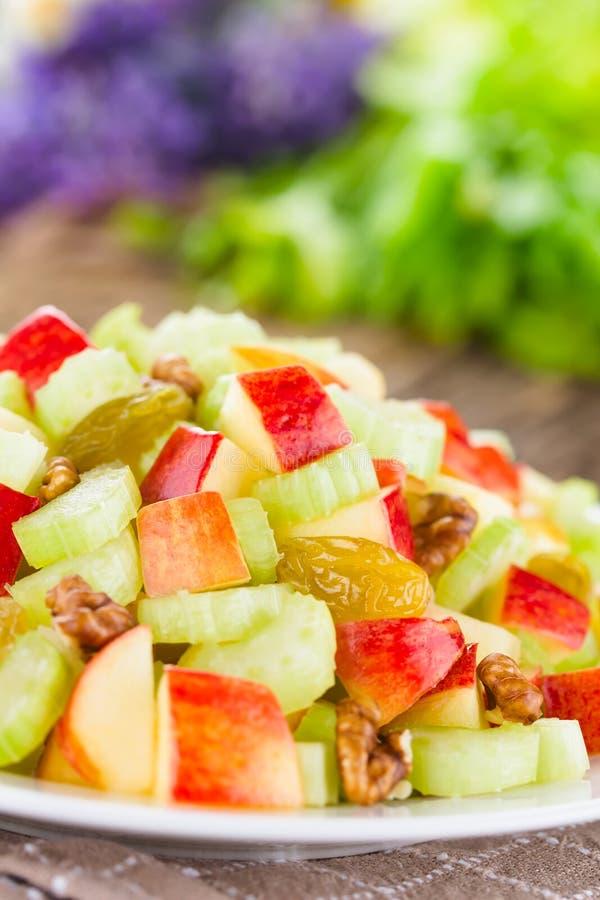 Fresh Vegan Waldorf Salad royalty free stock photos