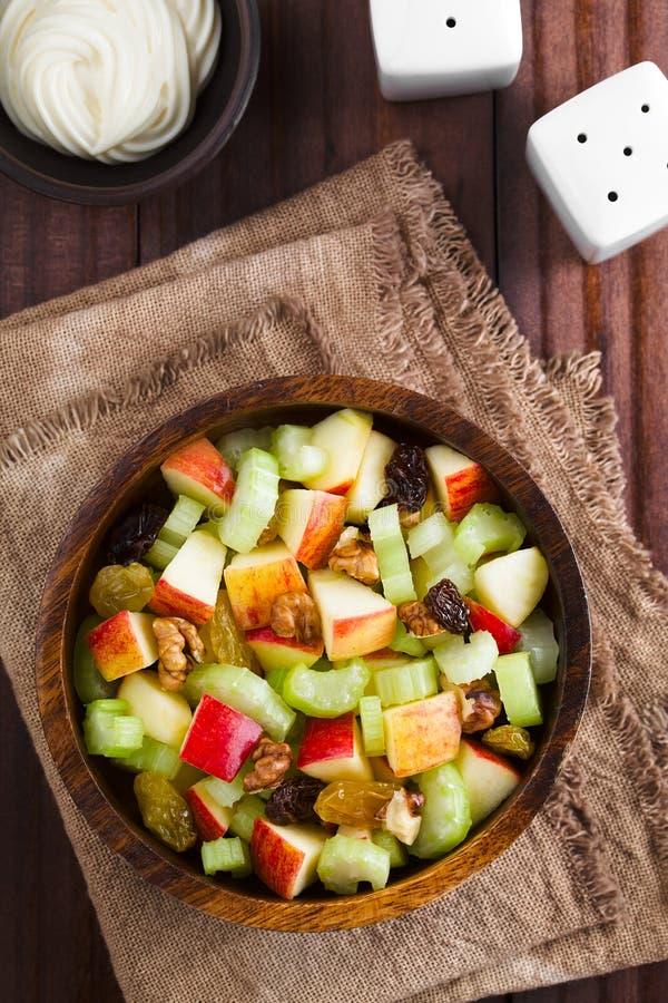 Fresh Vegan Waldorf Salad stock image