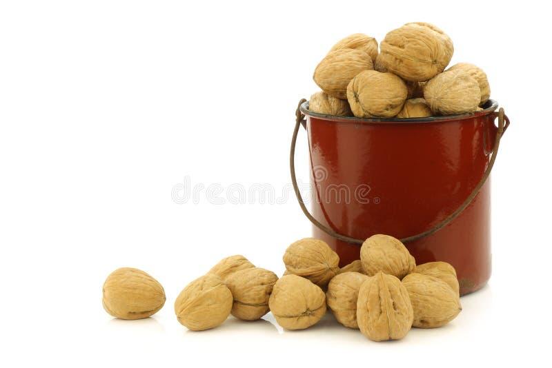 Fresh walnuts in an enamel cooking pot stock photo