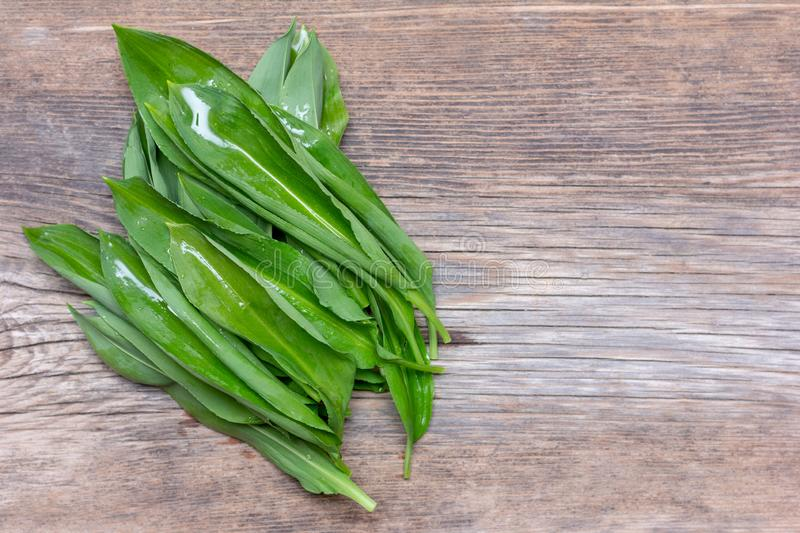 Fresh washed leaves of wild garlic on a wooden vintage background with copy space. top view stock photo