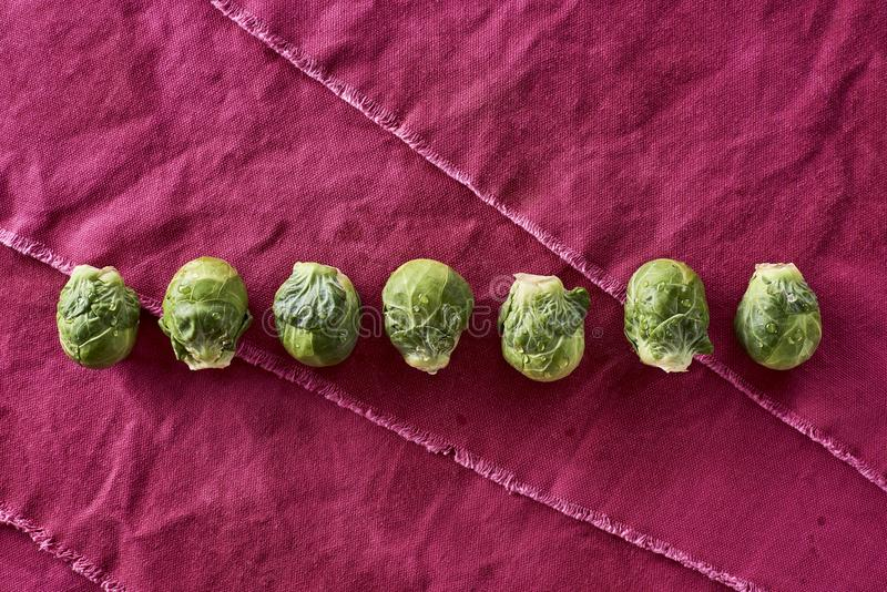 Fresh Washed Organic Brussel Sprouts Brassica oleracea var. gemmifera royalty free stock photo