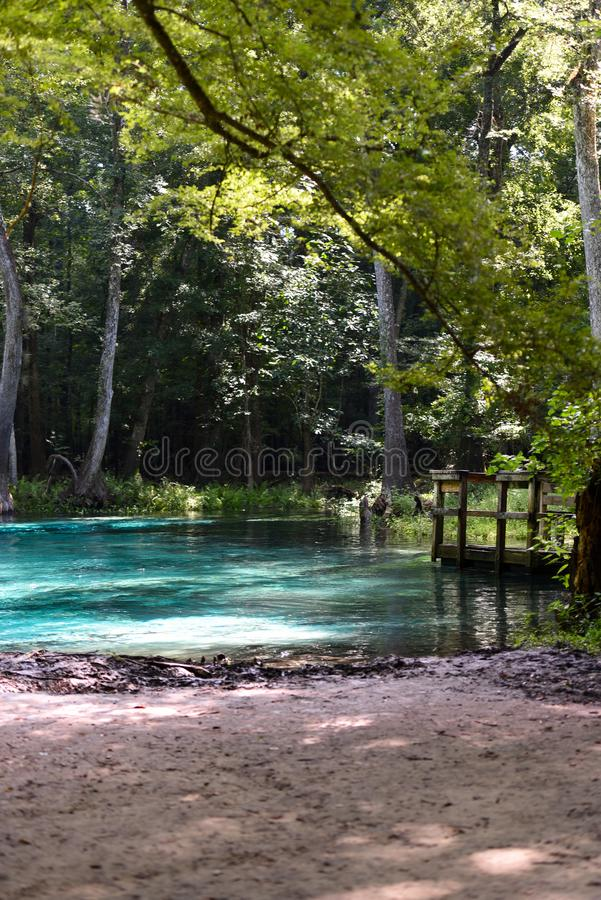 Fresh water Springs Florida USA with beautiful blue clear water. Favorite place to swim royalty free stock image