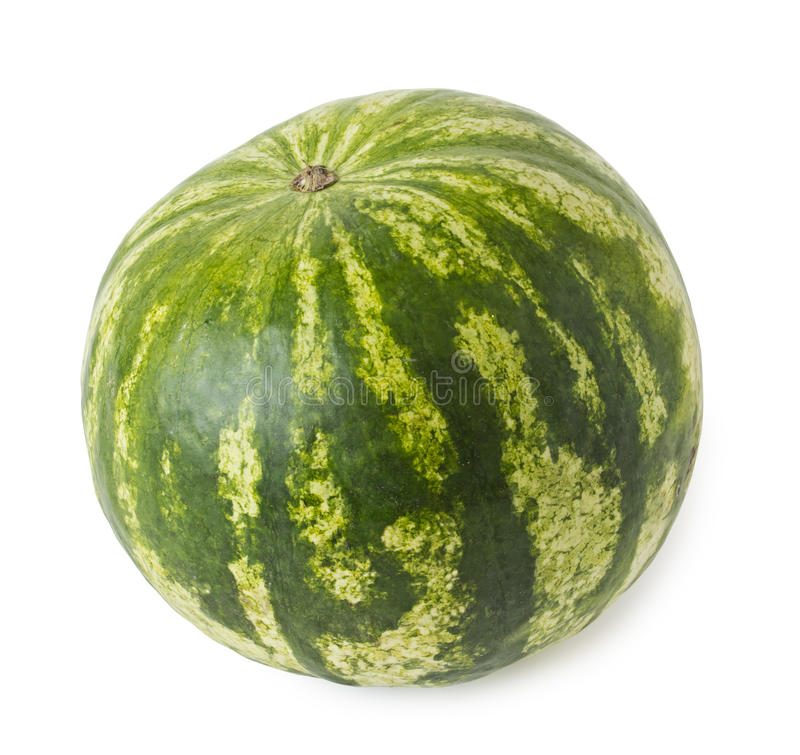 Download Fresh watermelon stock photo. Image of health, green - 21822478