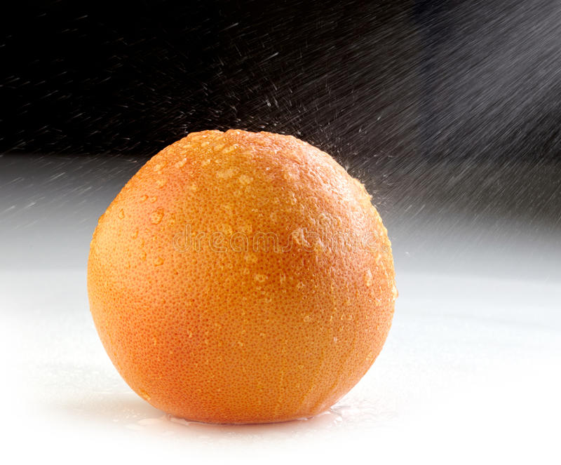 Download Fresh wet grapefruit stock photo. Image of nature, clean - 29249332