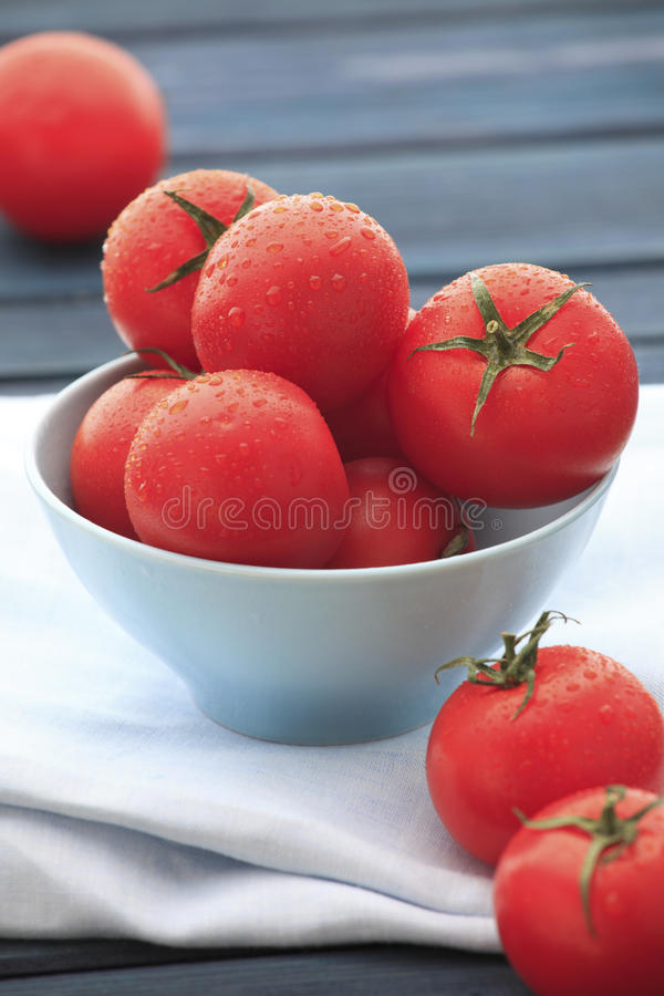 Download Fresh wet tomatoes stock image. Image of market, organic - 19508687