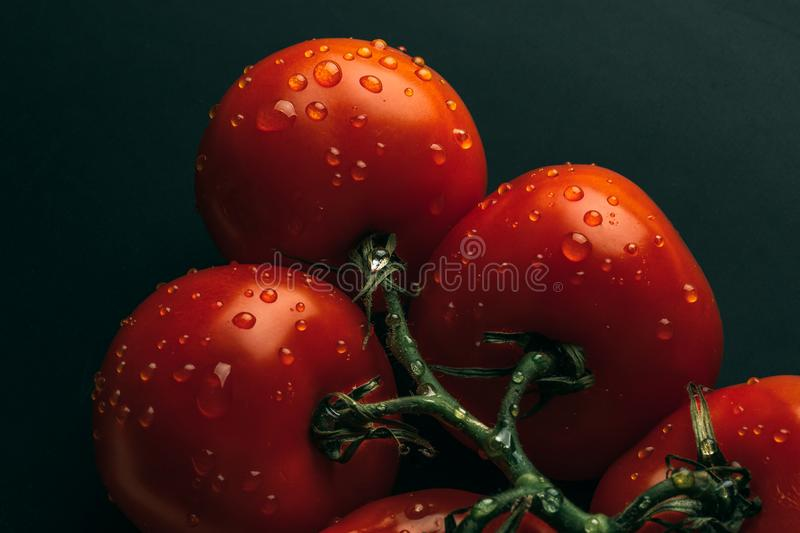 Fresh wet tomatoes in drops of water, top view stock images