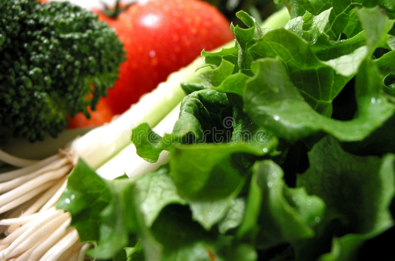 Fresh wet vegetables royalty free stock photo