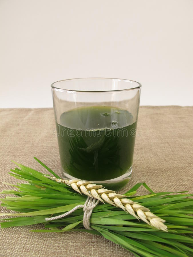 Fresh wheat grass juice. In glass royalty free stock images