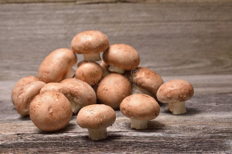 Fresh whole brown button mushrooms stock image