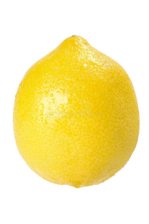 Free Fresh Whole Lemon Royalty Free Stock Photos - 6439128