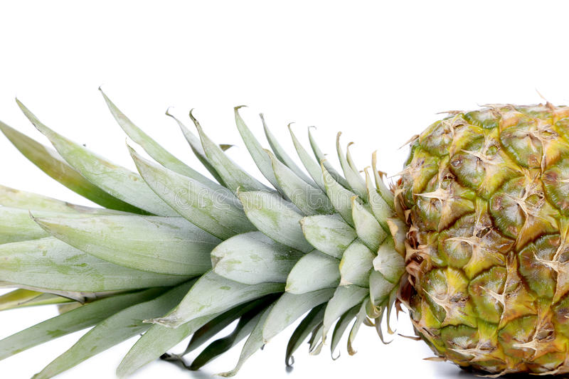 Download Fresh Whole Pineapple. Close Up. Stock Images - Image: 38558194