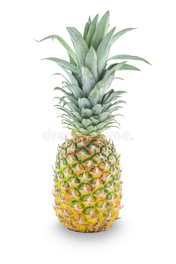 Fresh whole pineapple. Isolated on a white background royalty free stock images