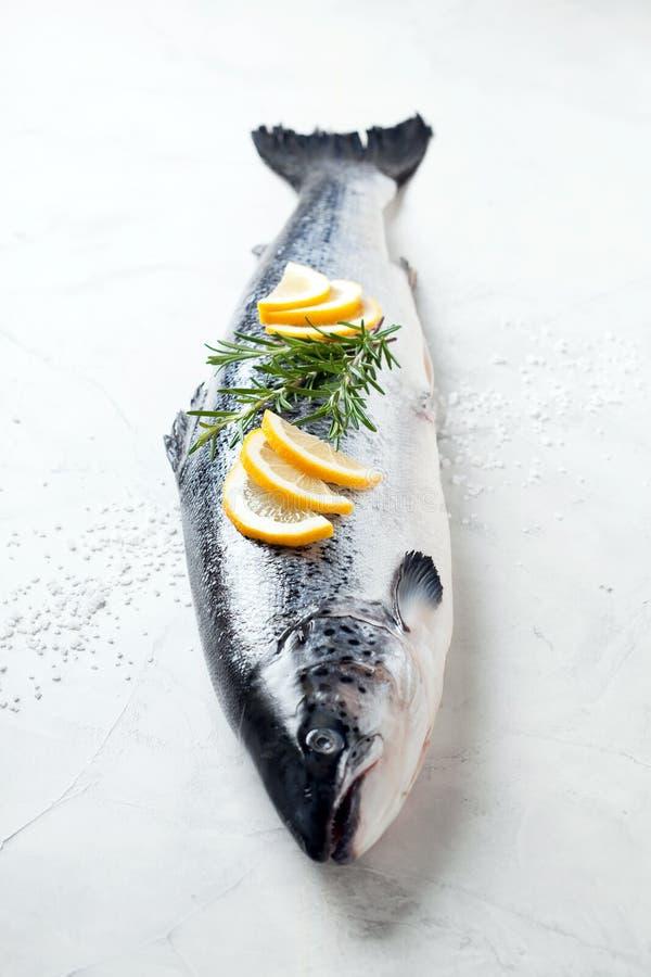 Fresh whole salmon stock images