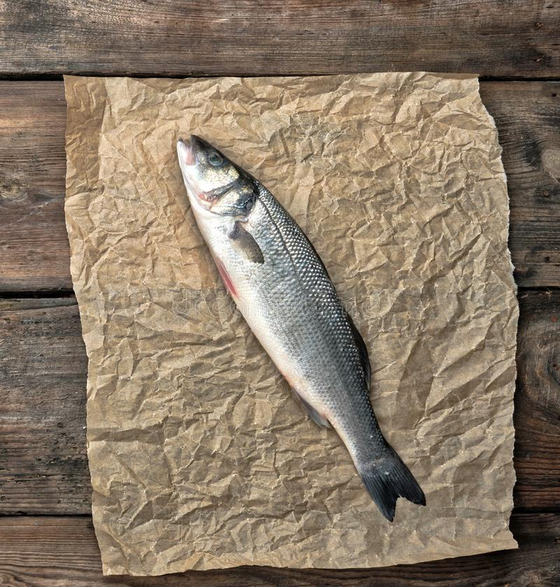 Fresh whole sea bass fish on brown crumpled paper. Top view stock photos