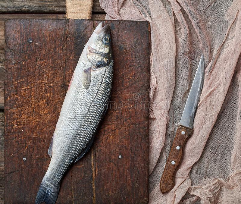 Fresh whole sea bass fish on brown cutting board. Fresh whole sea bass fish and knife on brown cutting board , top view royalty free stock photo