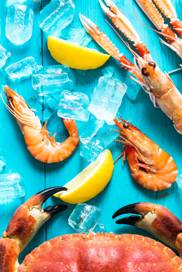 Fresh whole sea food from above royalty free stock photos