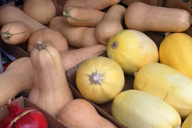 Fresh Winter squash. At farmers market royalty free stock image