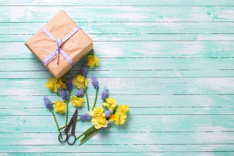 Fresh yellow and blue spring flowers and box with present on turquoise wooden background. stock photography
