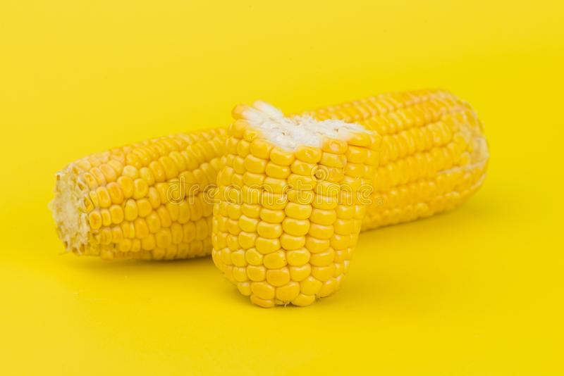 Fresh yellow corn isolated on yellow. Background royalty free stock images