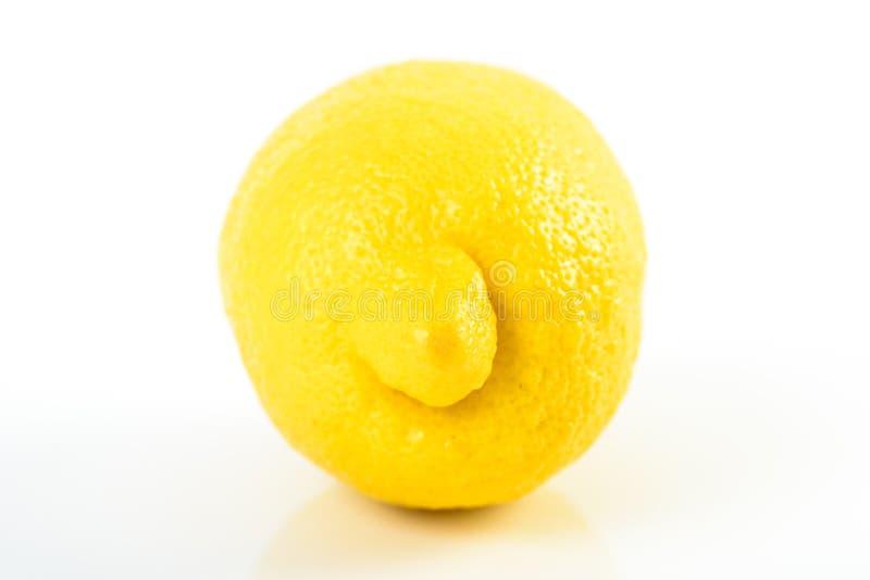 Fresh Yellow Lemon royalty free stock photography