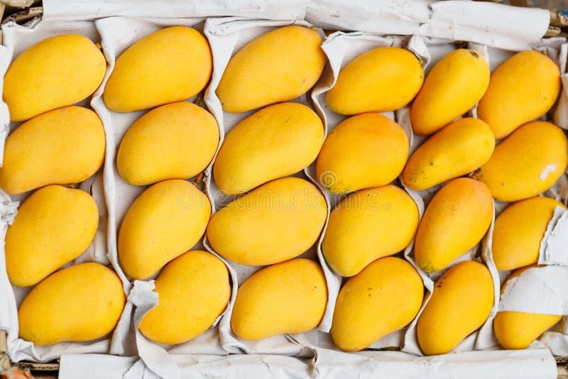 Fresh yellow mango lying in box on fruit market. Healthy food concept. Yellow mango lying in box on fruit market royalty free stock images