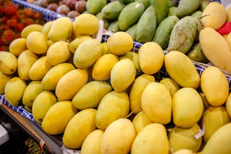 Fresh yellow mango pile on the fruit market stall. Bunch of tropical fruits. Ripe mango. Sweet dessert or raw vegetarian food. royalty free stock image