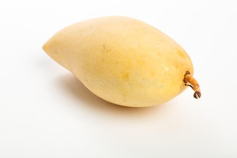 Fresh yellow mango stock photos
