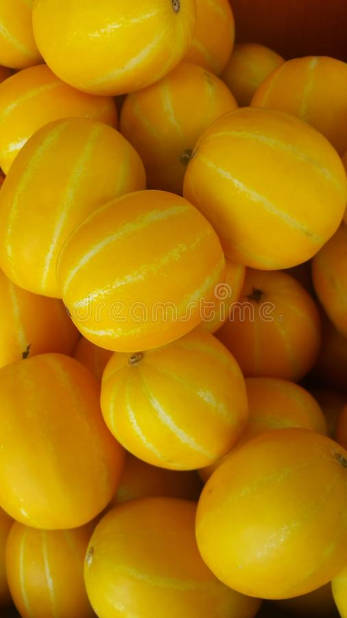 Fresh yellow melon or Canary melon or winter melon pile placed in market. For sale. The Canary melon or winter melon is a large, bright-yellow elongated melon royalty free stock image