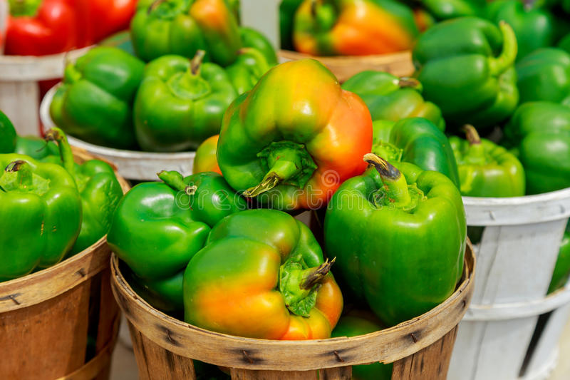 Fresh yellow, orange, green and red organic bell peppers capsicum on display for sale at local farmer& x27;s market stock photos