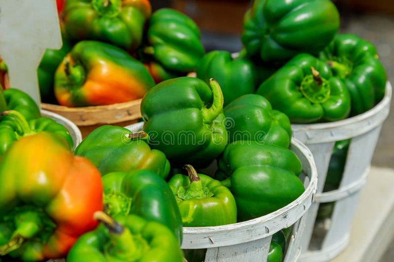Fresh yellow, orange, green and red organic bell peppers capsicum on display for sale royalty free stock photos