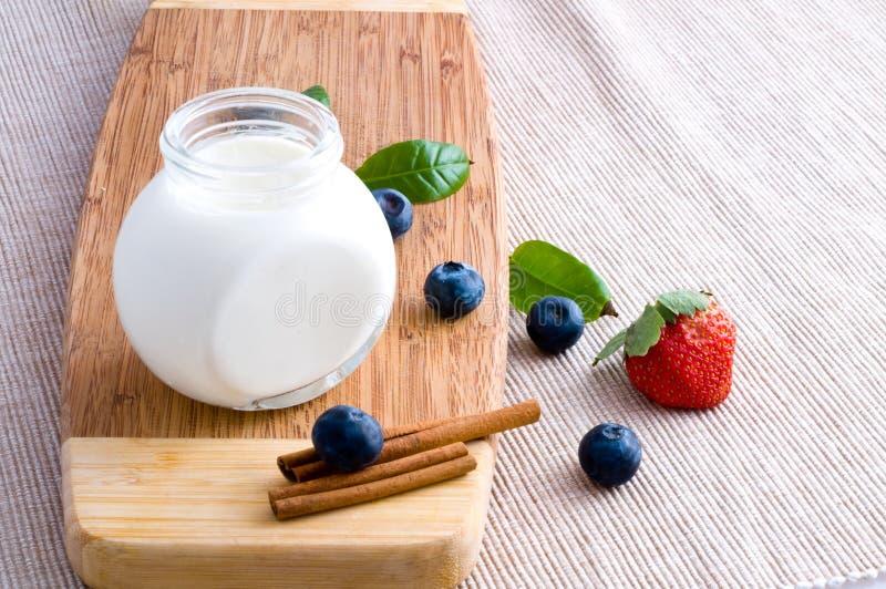 Fresh Yoghurt Royalty Free Stock Photos