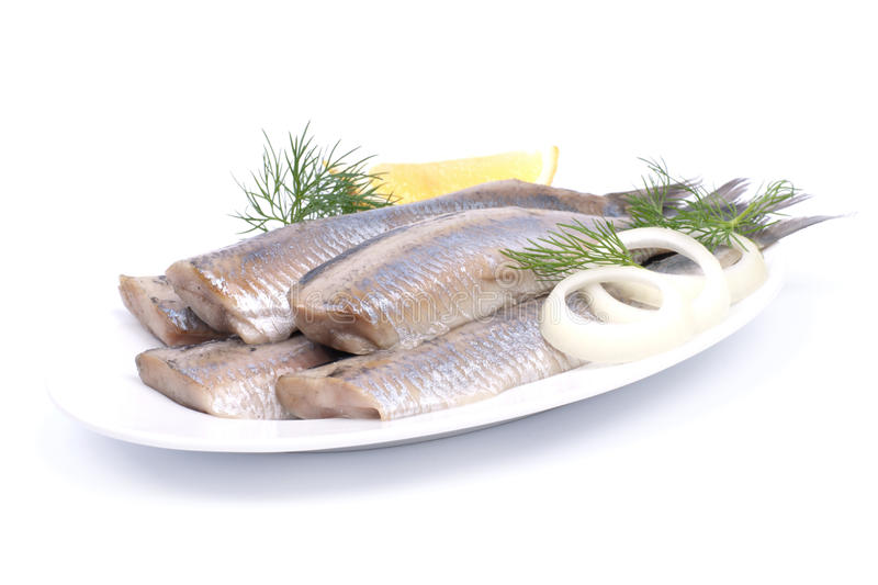 Fresh young herring royalty free stock photo
