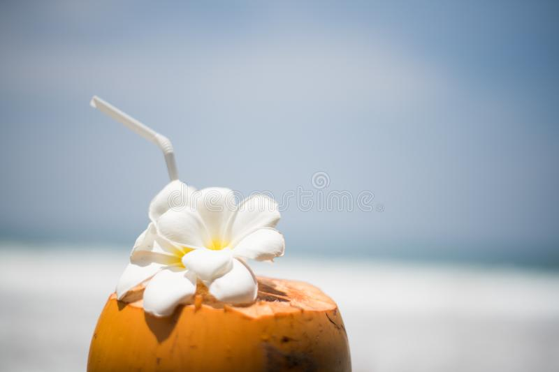 Fresh young orange coconut with a tube for drinks and Plumeria flowers in a tropical resort near the ocean. Waves stock photo