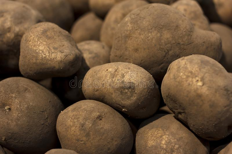 Fresh young potato lying on a counter in the grocery store royalty free stock photos