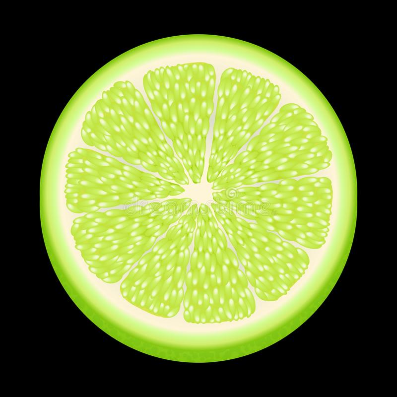 Fresh and yummy green lime. Bright juicy lime isolated on black. Realistic Green citrus slices.ingredients for mojito. Fruit in a. Slices of lime green isolated royalty free stock photography